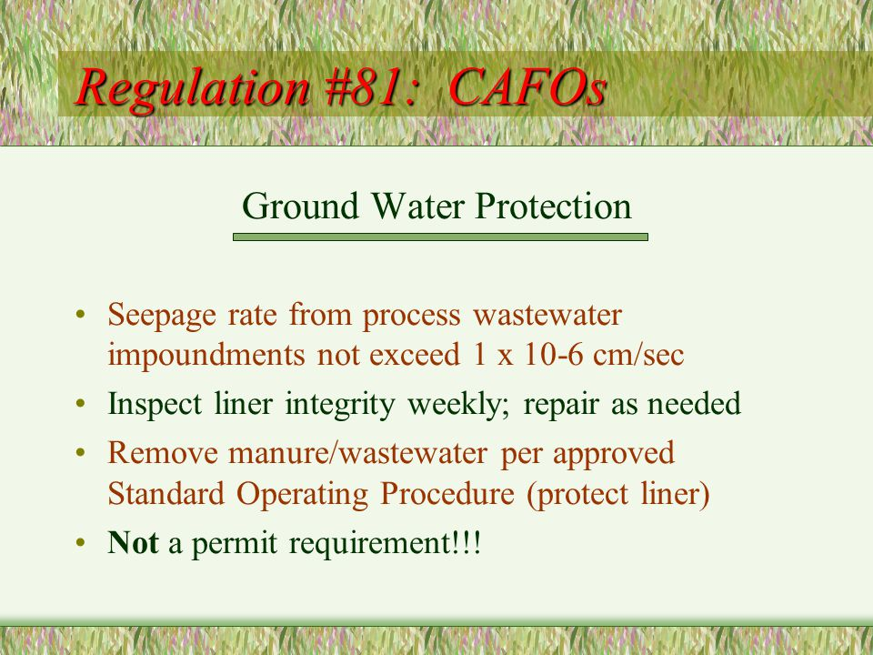 Regulation #81: CAFOs Ground Water Protection Seepage rate from process wastewater impoundments not exceed 1 x 10-6 cm/sec Inspect liner integrity weekly; repair as needed Remove manure/wastewater per approved Standard Operating Procedure (protect liner) Not a permit requirement!!!