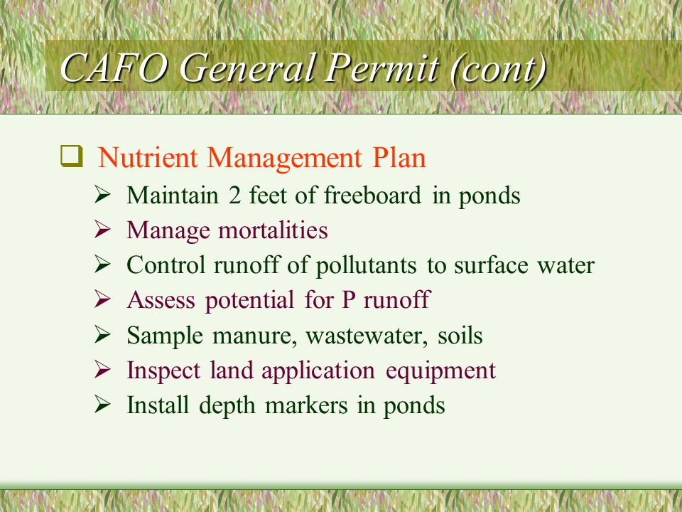 CAFO General Permit (cont)  Nutrient Management Plan  Maintain 2 feet of freeboard in ponds  Manage mortalities  Control runoff of pollutants to surface water  Assess potential for P runoff  Sample manure, wastewater, soils  Inspect land application equipment  Install depth markers in ponds