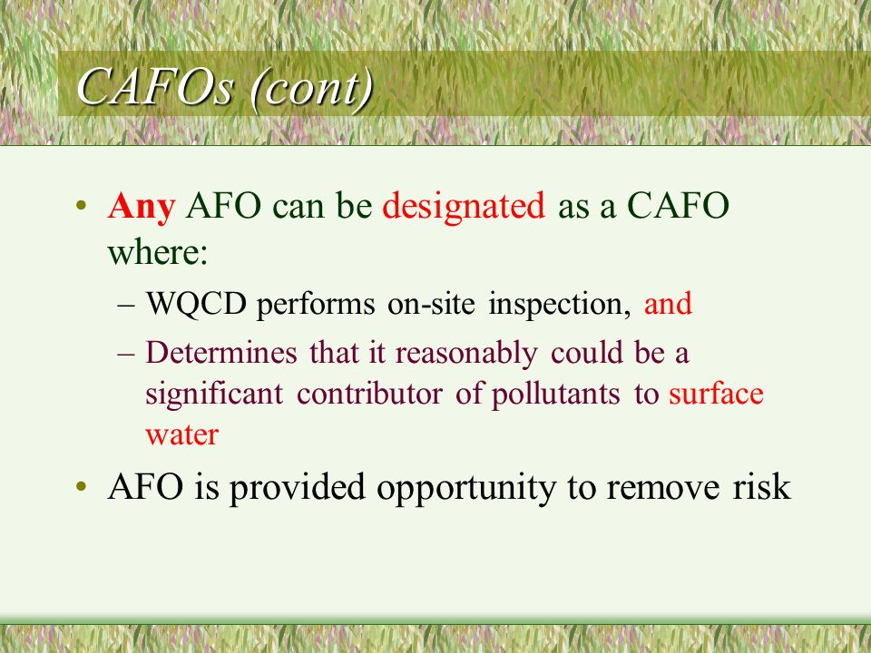 CAFOs (cont) Any AFO can be designated as a CAFO where: –WQCD performs on-site inspection, and –Determines that it reasonably could be a significant contributor of pollutants to surface water AFO is provided opportunity to remove risk