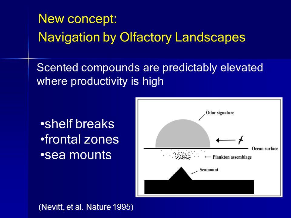 shelf breaks frontal zones sea mounts (Nevitt, et al.