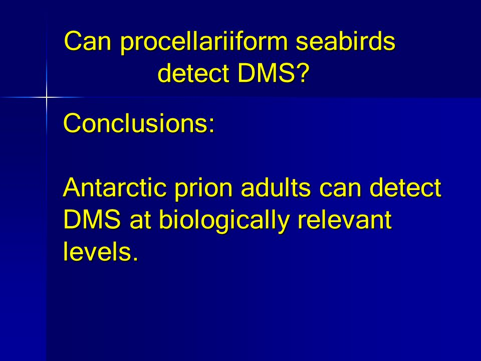 Can procellariiform seabirds detect DMS.
