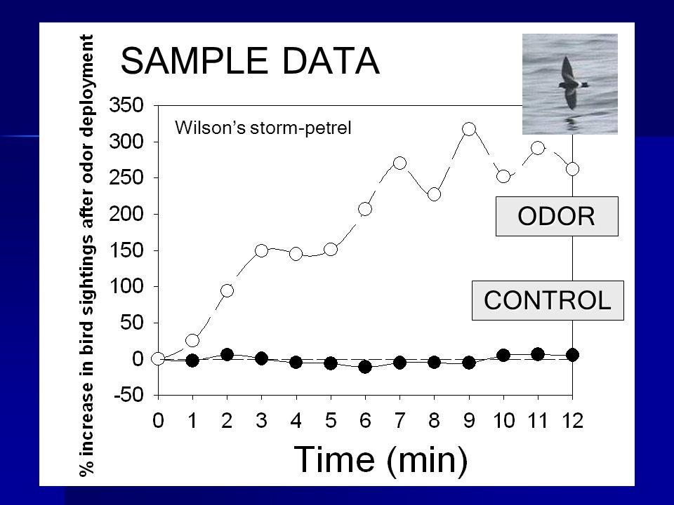 CONTROL ODOR Wilson's storm-petrel SAMPLE DATA