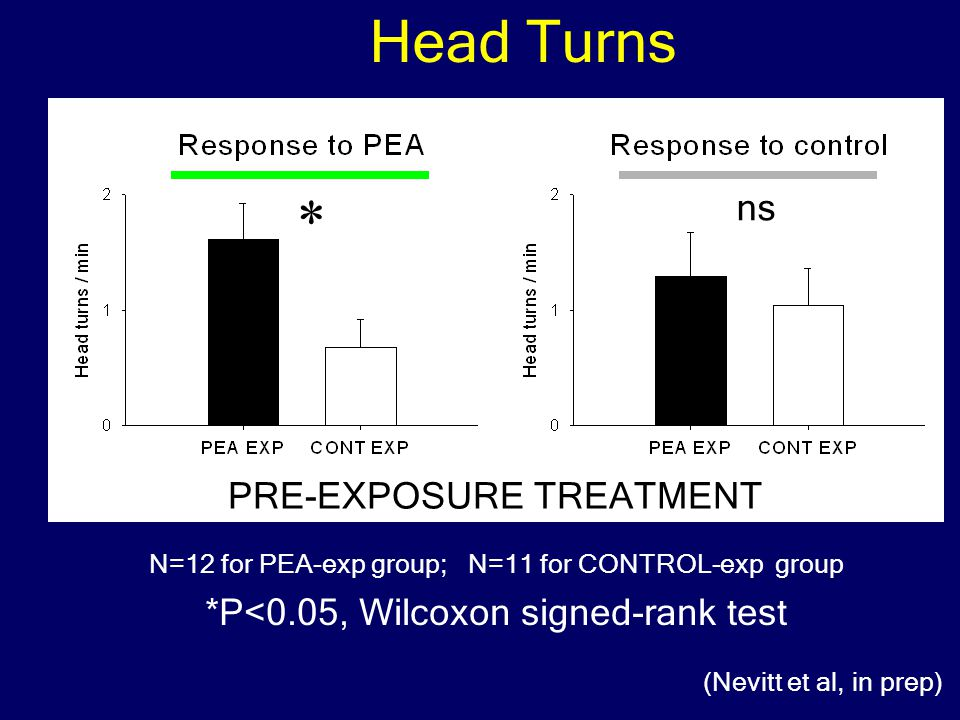 PRE-EXPOSURE TREATMENT N=12 for PEA-exp group; N=11 for CONTROL-exp group Head Turns * *P<0.05, Wilcoxon signed-rank test (Nevitt et al, in prep) ns