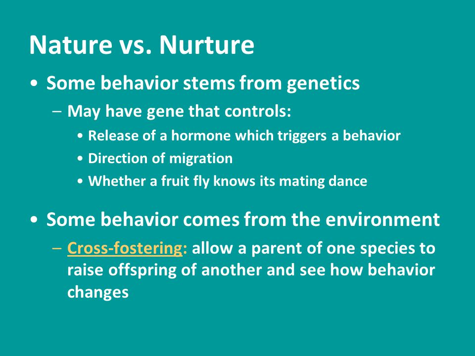 Nature vs. Nurture Some behavior stems from genetics –May have gene that controls: Release of a hormone which triggers a behavior Direction of migrati
