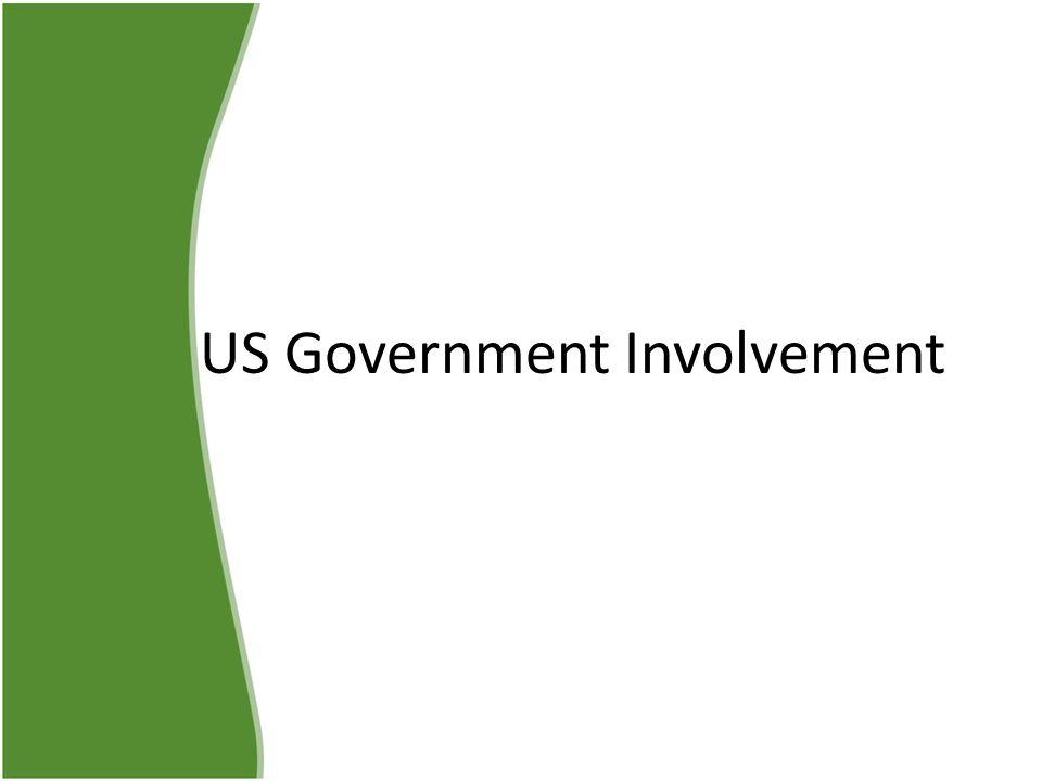 US Government Involvement