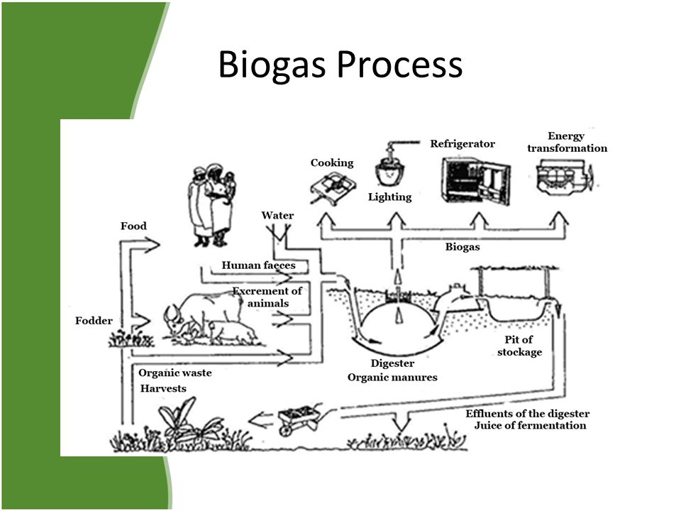Other Countries use of Biogas Nepal Africa Ecuador Sweden