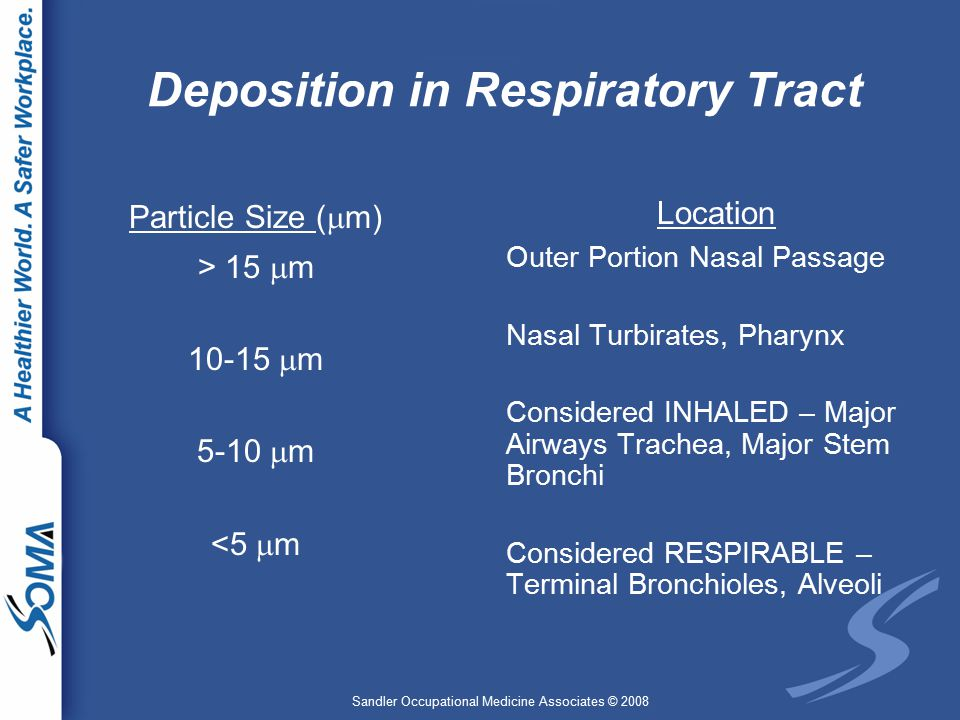 Sandler Occupational Medicine Associates © 2008 Deposition in Respiratory Tract Particle Size (  m) > 15  m 10-15  m 5-10  m <5  m Location Outer Portion Nasal Passage Nasal Turbirates, Pharynx Considered INHALED – Major Airways Trachea, Major Stem Bronchi Considered RESPIRABLE – Terminal Bronchioles, Alveoli