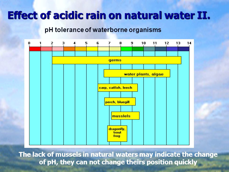 Effect of acidic rain on natural water II.