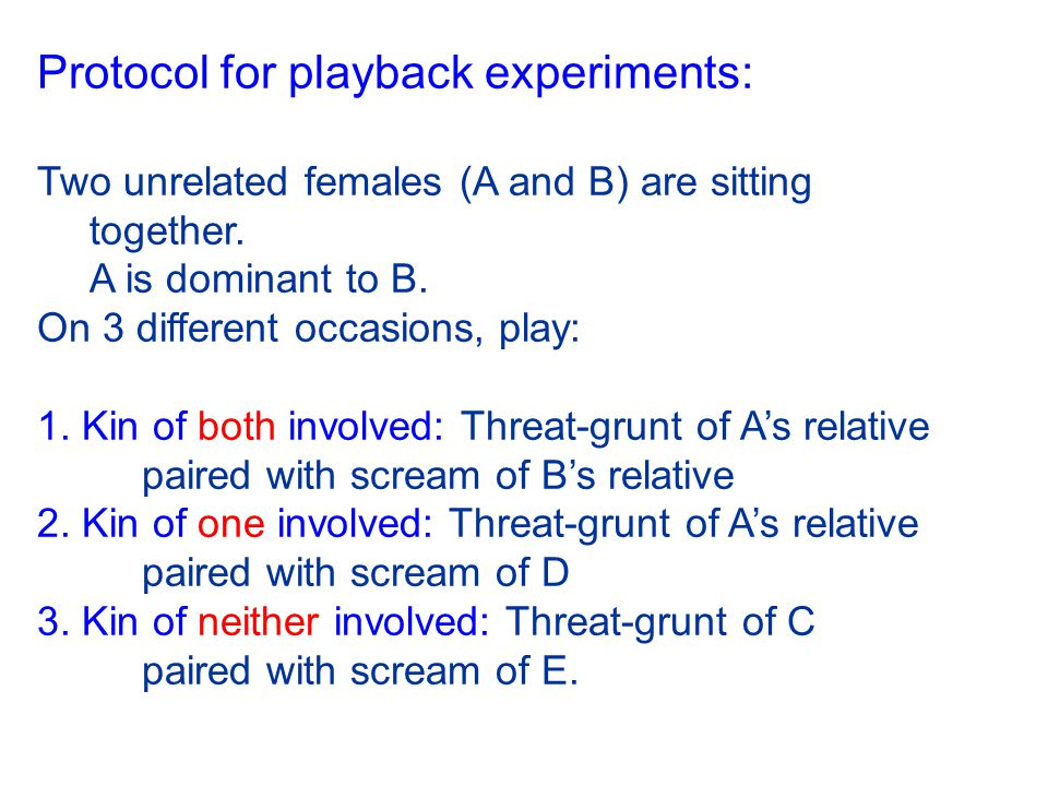 Protocol for playback experiments: Two unrelated females (A and B) are sitting together. A is dominant to B. On 3 different occasions, play: 1. Kin of