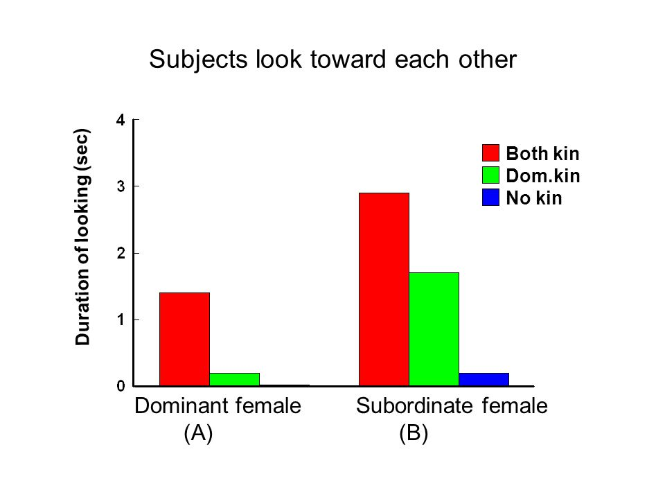 Subjects look toward each other Duration of looking (sec) Both kin Dom.kin No kin Dominant female (A) Subordinate female (B)
