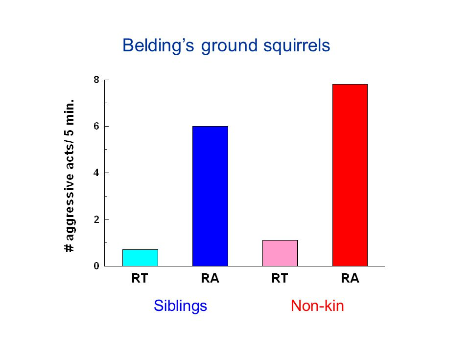 Belding's ground squirrels SiblingsNon-kin