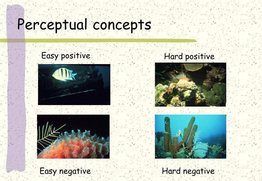 Perceptual concepts Easy positive Hard positive Easy negativeHard negative