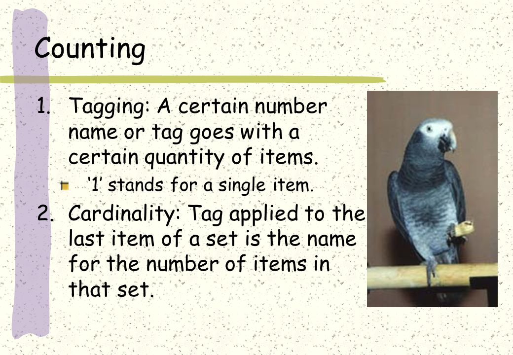 Counting 1.Tagging: A certain number name or tag goes with a certain quantity of items.