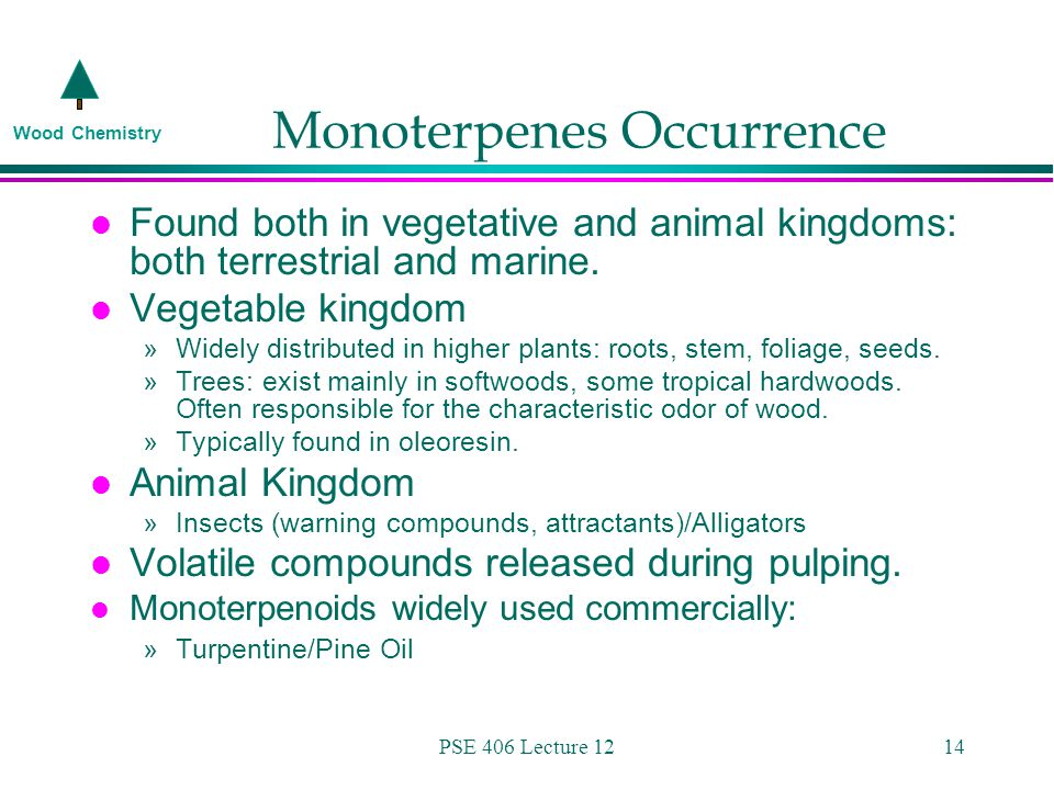 Wood Chemistry PSE 406 Lecture 1214 Monoterpenes Occurrence l Found both in vegetative and animal kingdoms: both terrestrial and marine.