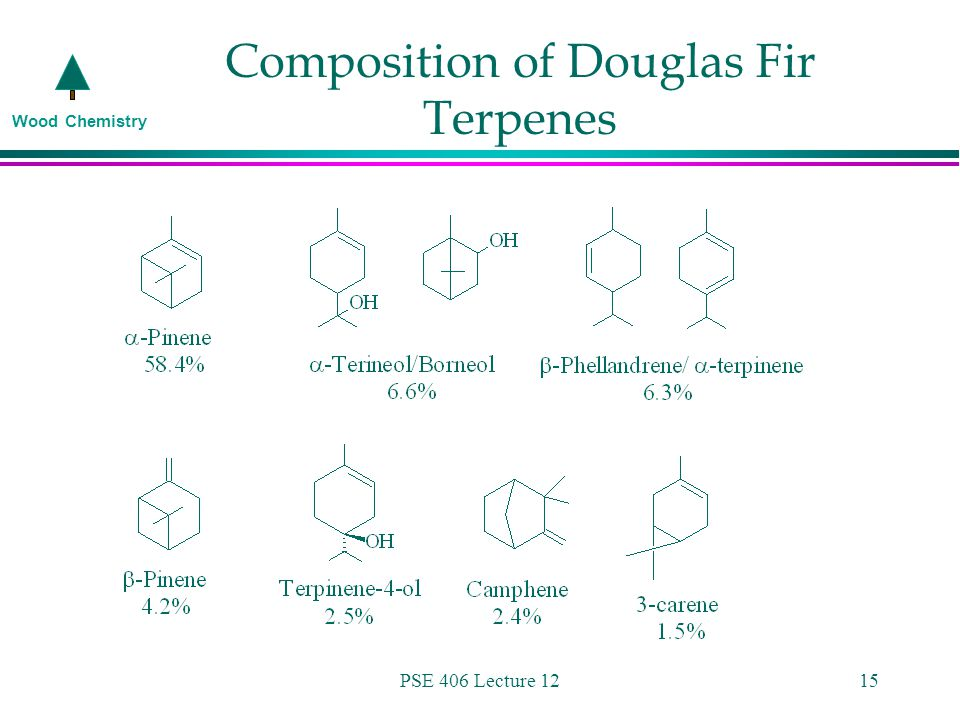 Wood Chemistry PSE 406 Lecture 1215 Composition of Douglas Fir Terpenes