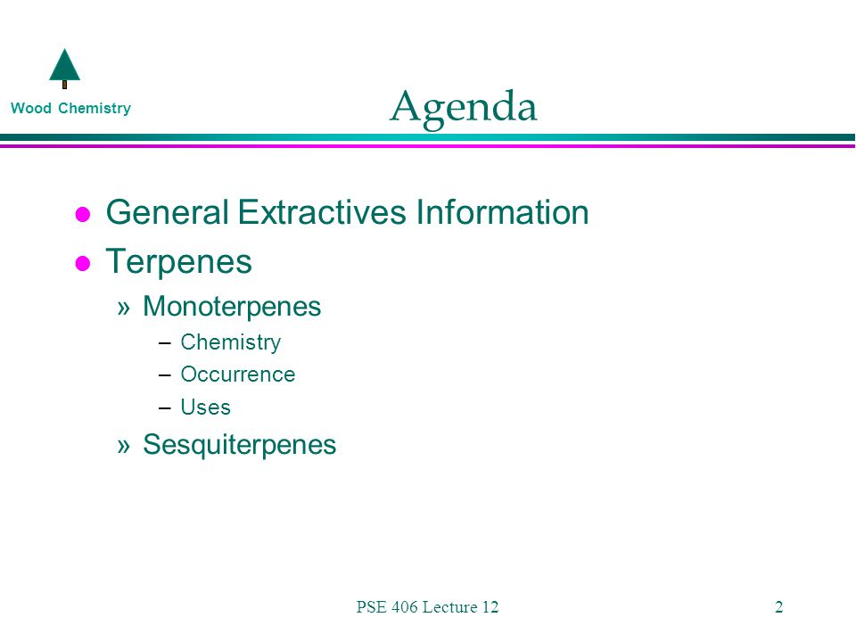Wood Chemistry PSE 406 Lecture 122 Agenda l General Extractives Information l Terpenes »Monoterpenes –Chemistry –Occurrence –Uses »Sesquiterpenes
