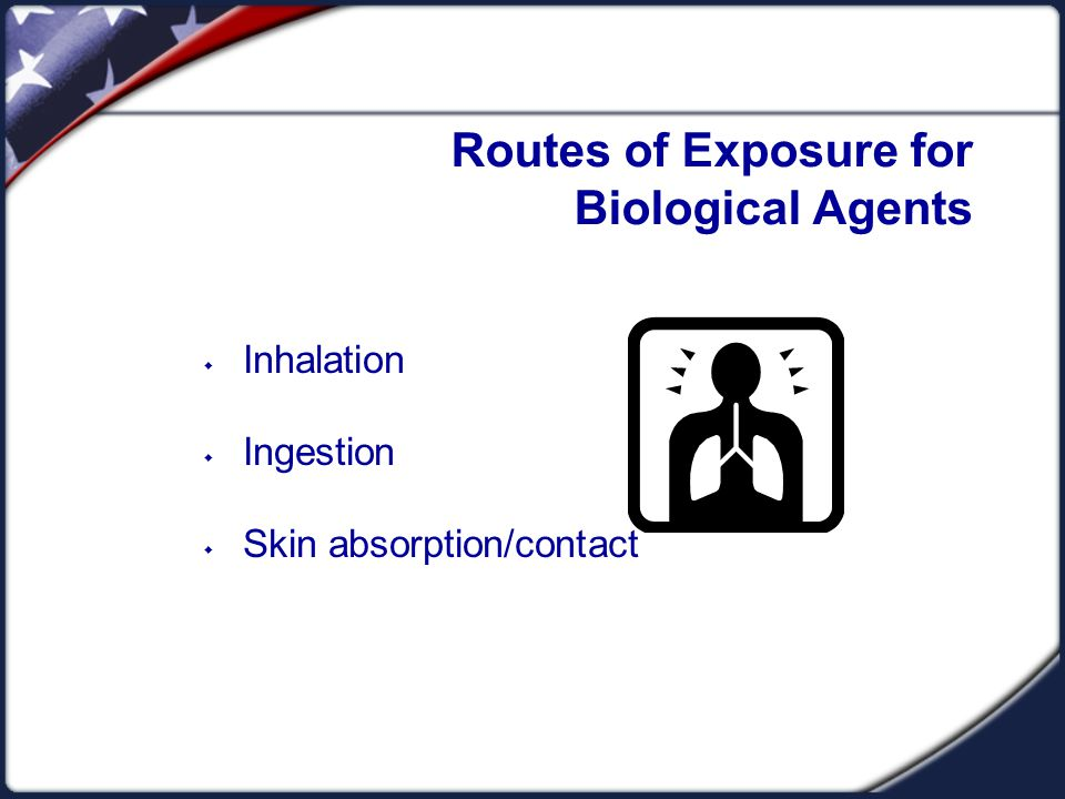 Routes of Exposure for Biological Agents  Inhalation  Ingestion  Skin absorption/contact