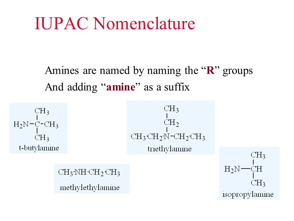 """IUPAC Nomenclature Amines are named by naming the """"R"""" groups And adding """"amine"""" as a suffix"""