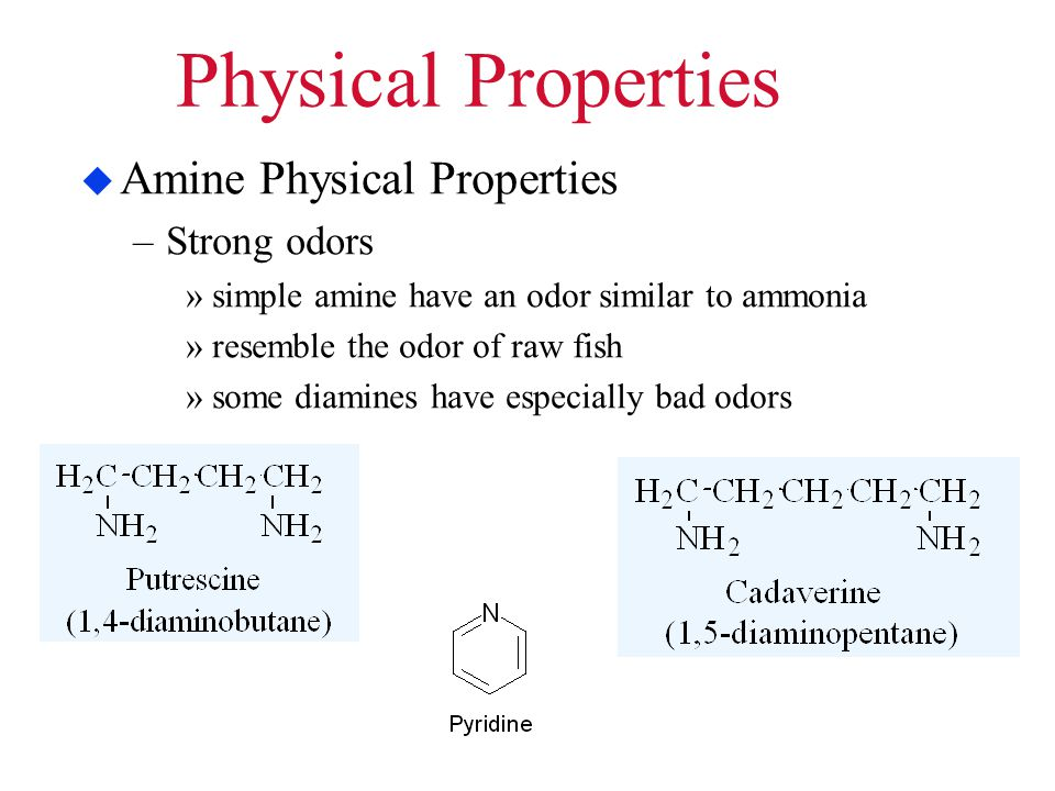 Physical Properties  Amine Physical Properties –Strong odors »simple amine have an odor similar to ammonia »resemble the odor of raw fish »some diami