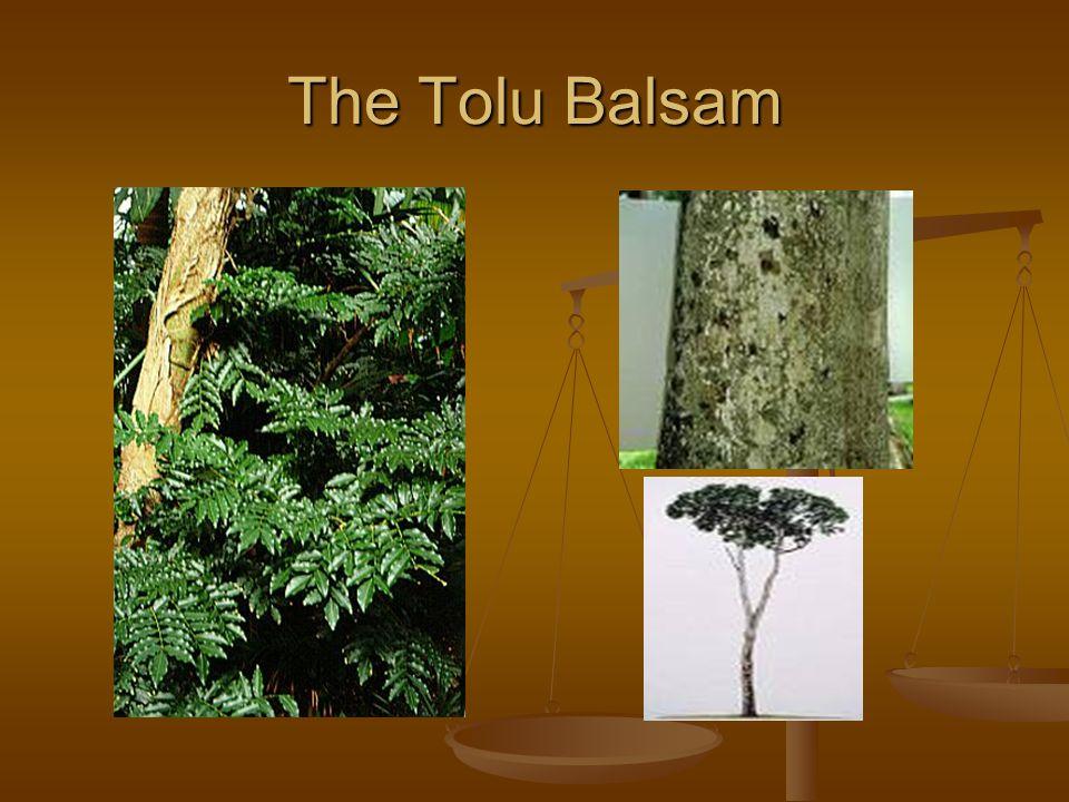 The Tolu Balsam