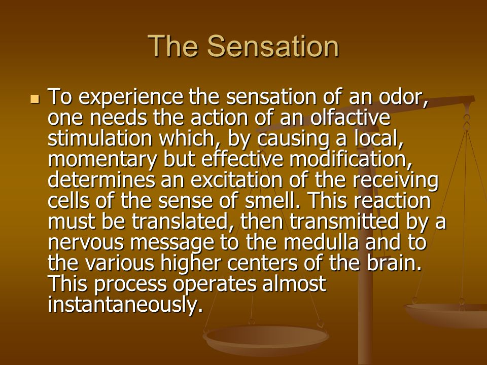 The Sensation To experience the sensation of an odor, one needs the action of an olfactive stimulation which, by causing a local, momentary but effective modification, determines an excitation of the receiving cells of the sense of smell.