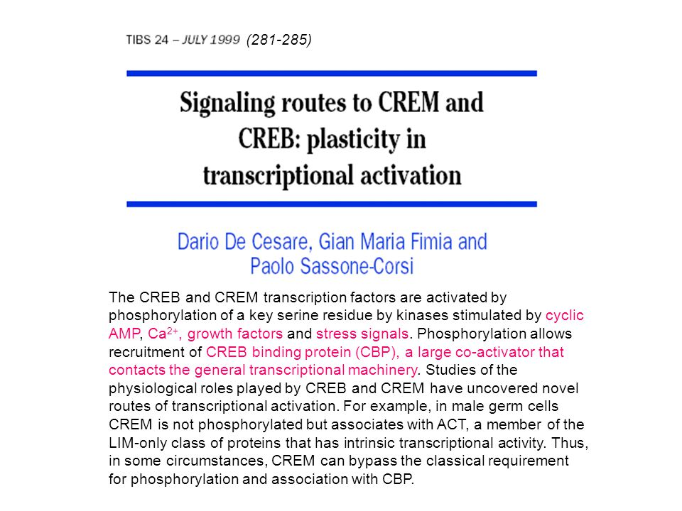 (281-285) The CREB and CREM transcription factors are activated by phosphorylation of a key serine residue by kinases stimulated by cyclic AMP, Ca 2+,
