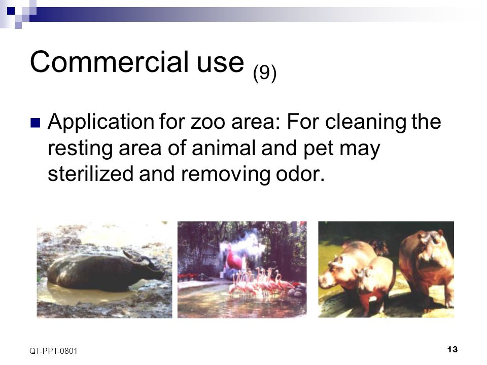 13 QT-PPT-0801 Commercial use (9) Application for zoo area: For cleaning the resting area of animal and pet may sterilized and removing odor.