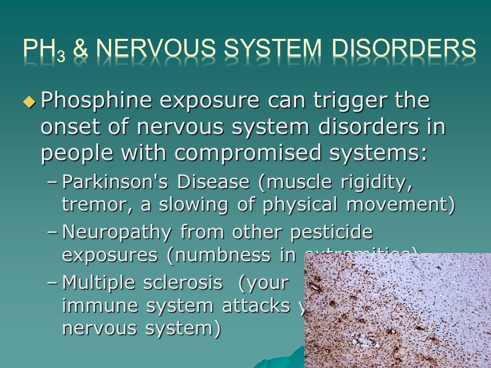  Phosphine exposure can trigger the onset of nervous system disorders in people with compromised systems: –Parkinson s Disease (muscle rigidity, tremor, a slowing of physical movement) –Neuropathy from other pesticide exposures (numbness in extremities) –Multiple sclerosis (your immune system attacks your nervous system)