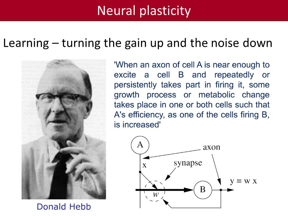 Neural plasticity Learning – turning the gain up and the noise down