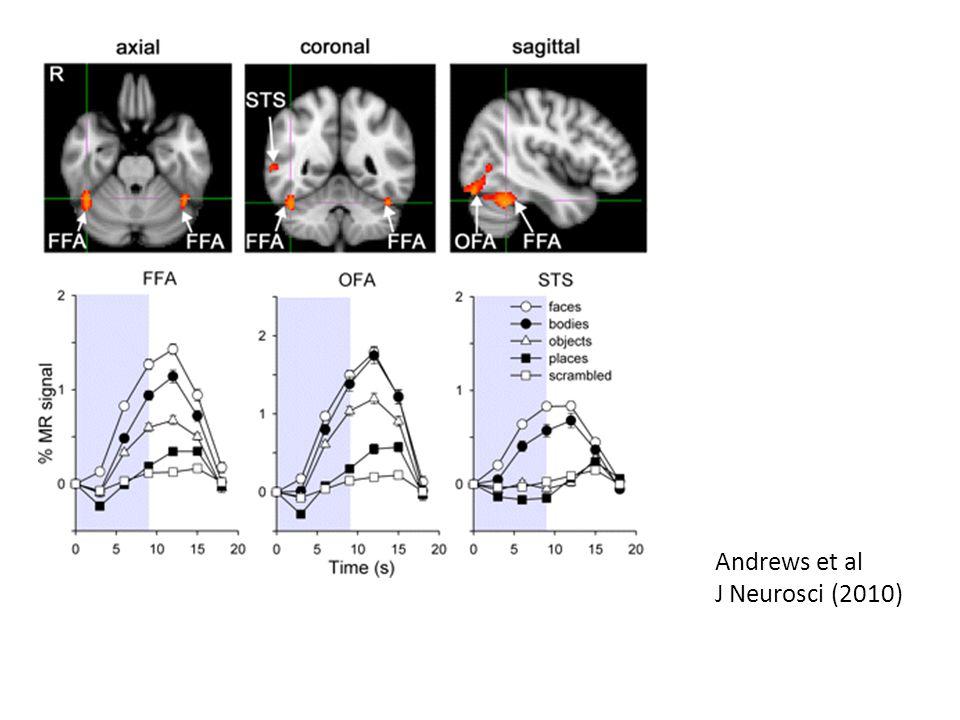 Andrews et al J Neurosci (2010)