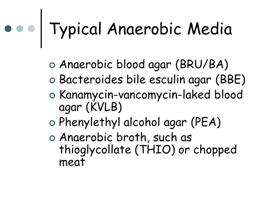 Typical Anaerobic Media Anaerobic blood agar (BRU/BA) Bacteroides bile esculin agar (BBE) Kanamycin-vancomycin-laked blood agar (KVLB) Phenylethyl alcohol agar (PEA) Anaerobic broth, such as thioglycollate (THIO) or chopped meat