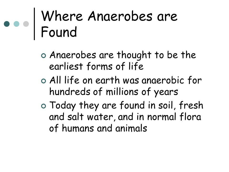 Where Anaerobes are Found Anaerobes are thought to be the earliest forms of life All life on earth was anaerobic for hundreds of millions of years Today they are found in soil, fresh and salt water, and in normal flora of humans and animals
