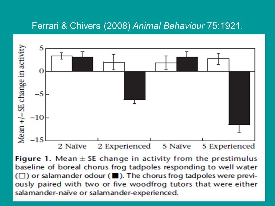 Ferrari & Chivers (2008) Animal Behaviour 75:1921.