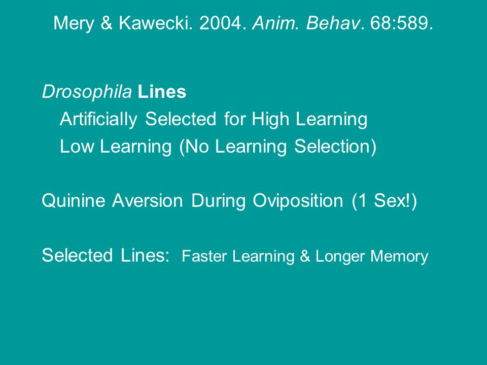 Drosophila Lines Artificially Selected for High Learning Low Learning (No Learning Selection) Quinine Aversion During Oviposition (1 Sex!) Selected Lines: Faster Learning & Longer Memory