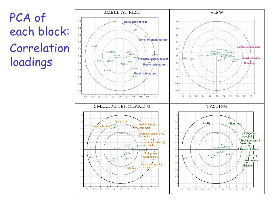 PCA of each block: Correlation loadings