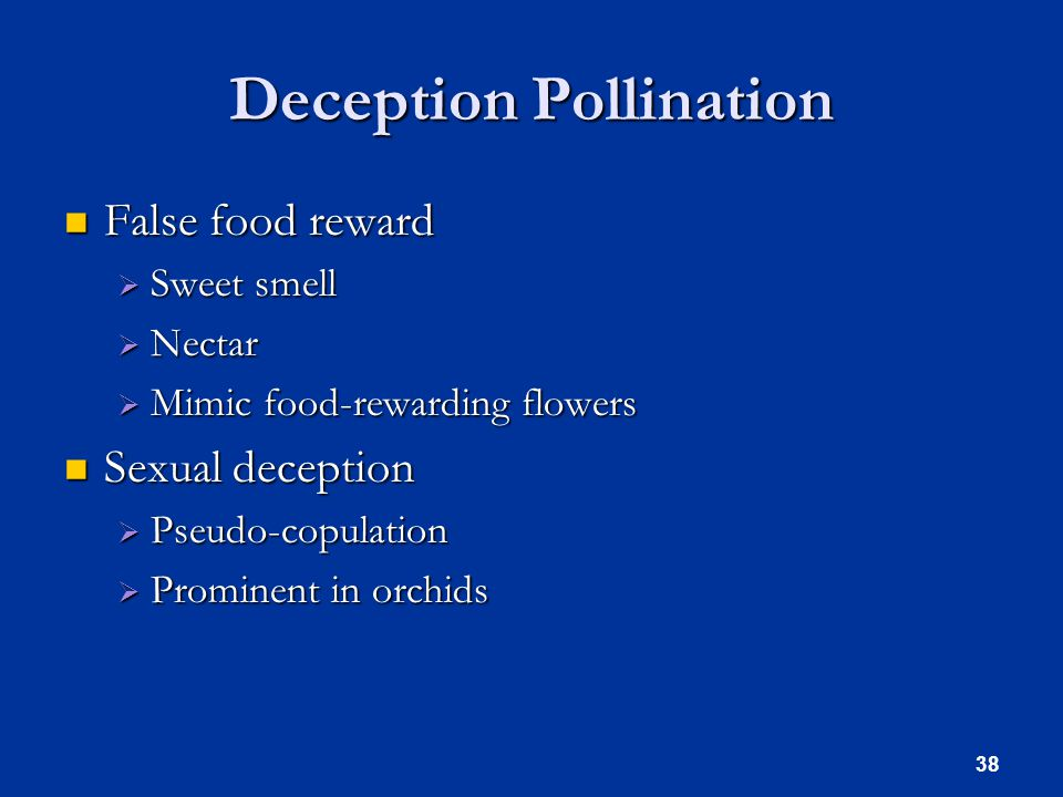 Deception Pollination False food reward False food reward  Sweet smell  Nectar  Mimic food-rewarding flowers Sexual deception Sexual deception  Pseudo-copulation  Prominent in orchids 38