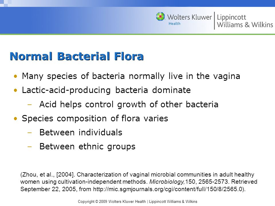 Copyright © 2009 Wolters Kluwer Health | Lippincott Williams & Wilkins Normal Bacterial Flora Many species of bacteria normally live in the vagina Lactic-acid-producing bacteria dominate –Acid helps control growth of other bacteria Species composition of flora varies –Between individuals –Between ethnic groups (Zhou, et al., [2004].