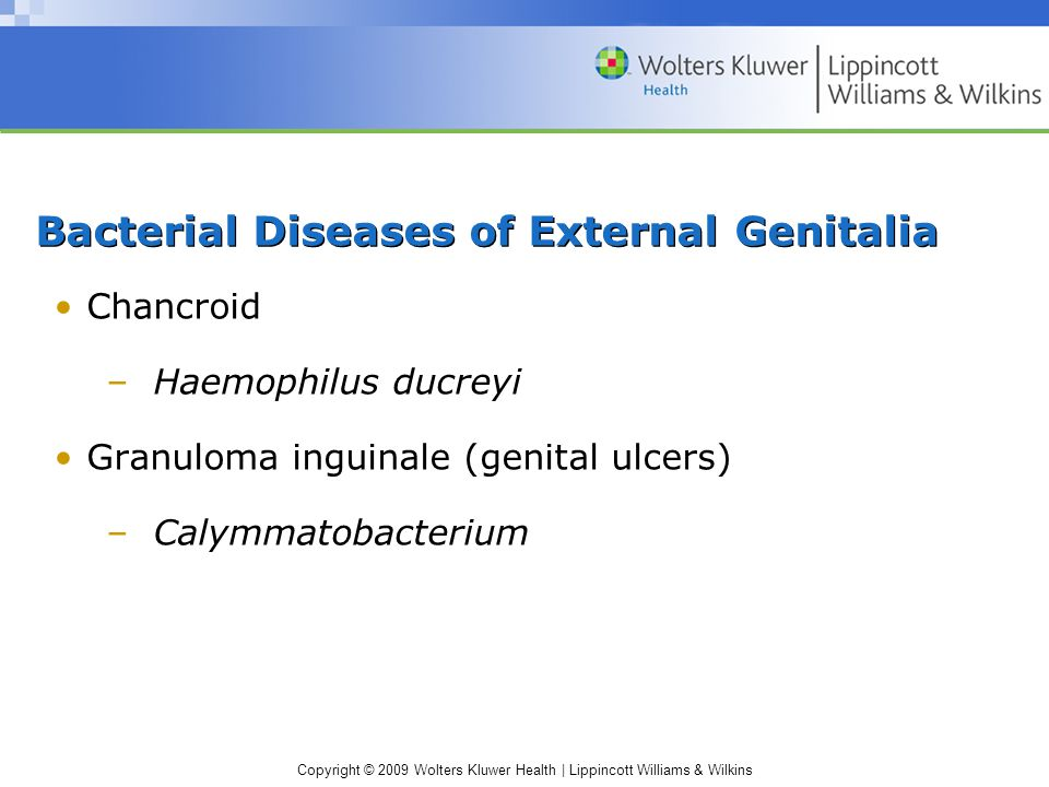 Copyright © 2009 Wolters Kluwer Health | Lippincott Williams & Wilkins Bacterial Diseases of External Genitalia Chancroid –Haemophilus ducreyi Granuloma inguinale (genital ulcers) –Calymmatobacterium