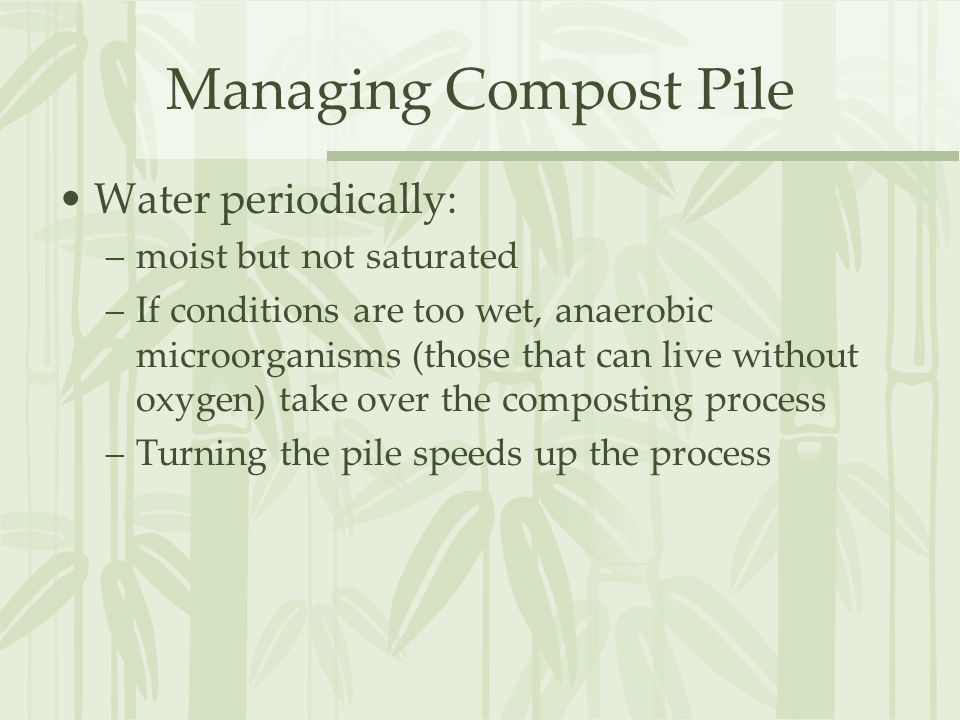 Managing Compost Pile Water periodically: –moist but not saturated –If conditions are too wet, anaerobic microorganisms (those that can live without oxygen) take over the composting process –Turning the pile speeds up the process