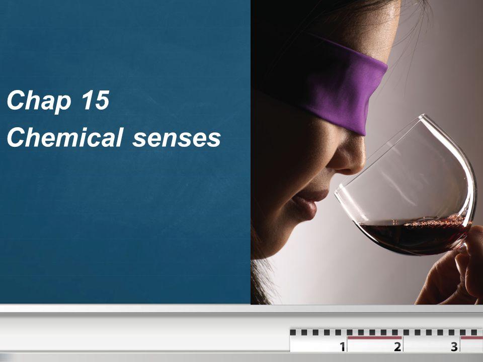 Chap 15 Chemical senses