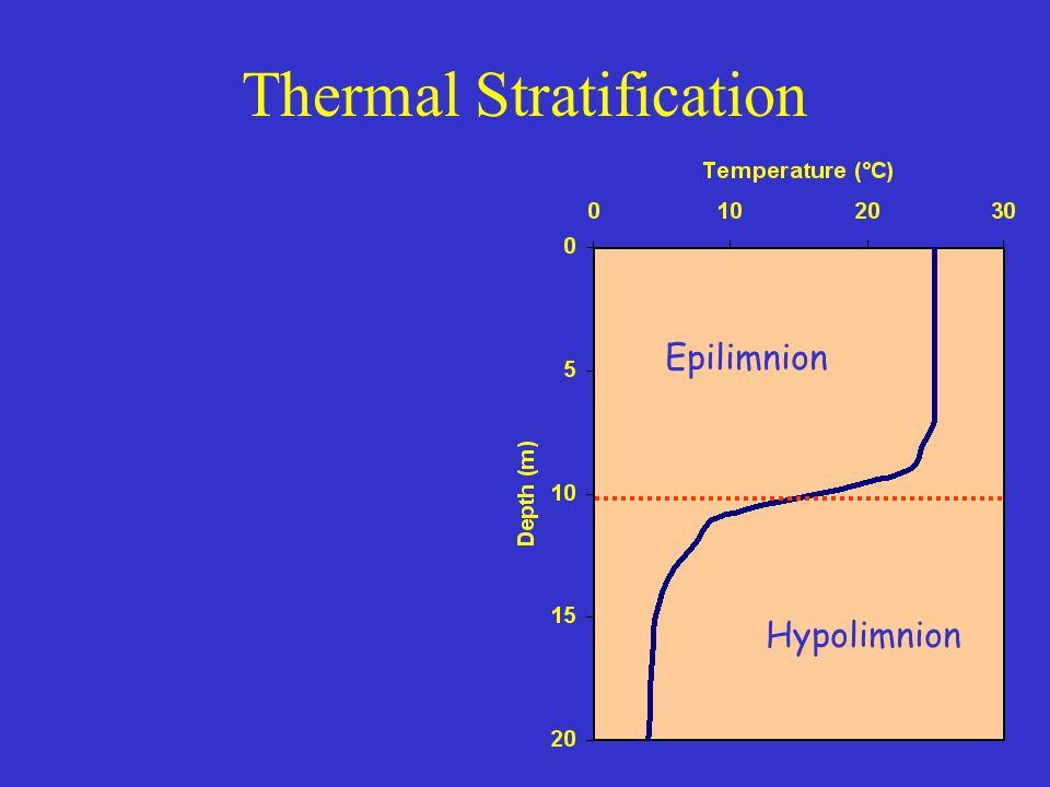 Seasonal Stratification