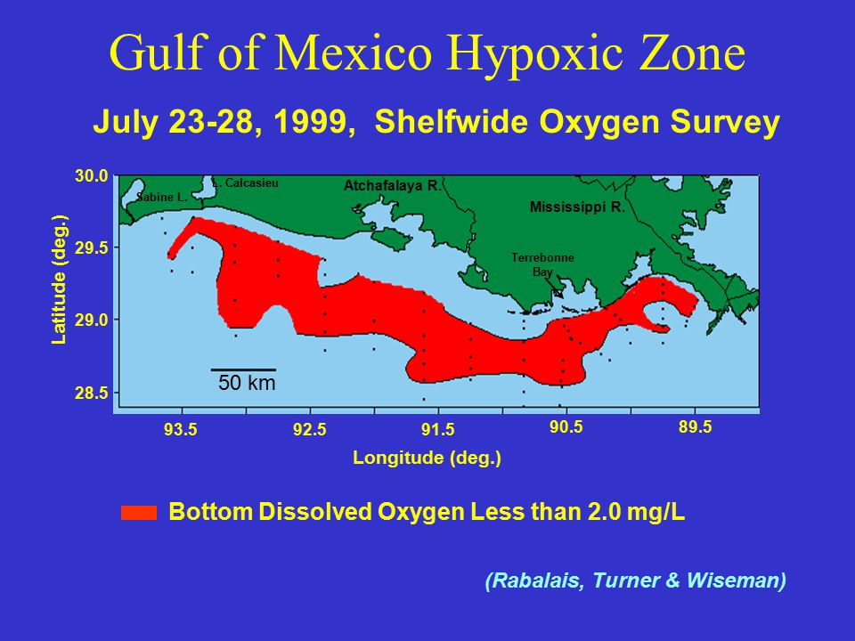 93.592.591.5 90.589.5 Longitude (deg.) 28.5 29.0 29.5 30.0 Latitude (deg.) July 23-28, 1999, Shelfwide Oxygen Survey Bottom Dissolved Oxygen Less than 2.0 mg/L Atchafalaya R.