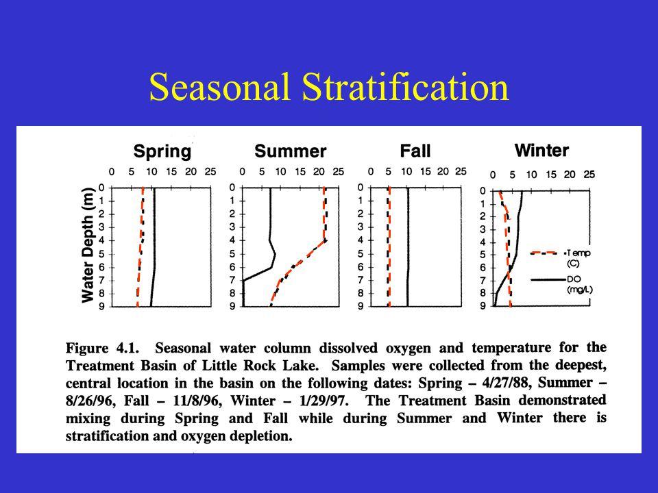 Vollenweider Model Steady State Solution: