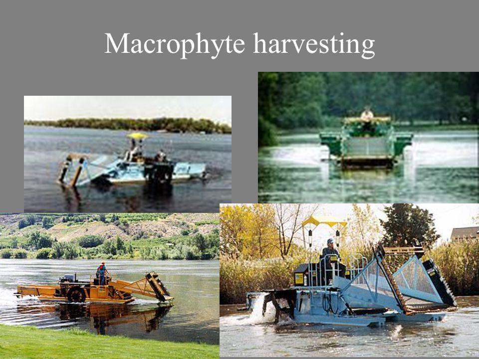 Macrophyte harvesting