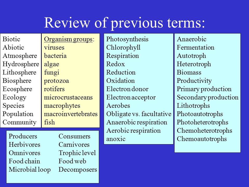 Review of previous terms: Biotic Abiotic Atmosphere Hydrosphere Lithosphere Biosphere Ecosphere Ecology Species Population Community Organism groups: viruses bacteria algae fungi protozoa rotifers microcrustaceans macrophytes macroinvertebrates fish Photosynthesis Chlorophyll Respiration Redox Reduction Oxidation Electron donor Electron acceptor Aerobes Obligate vs.