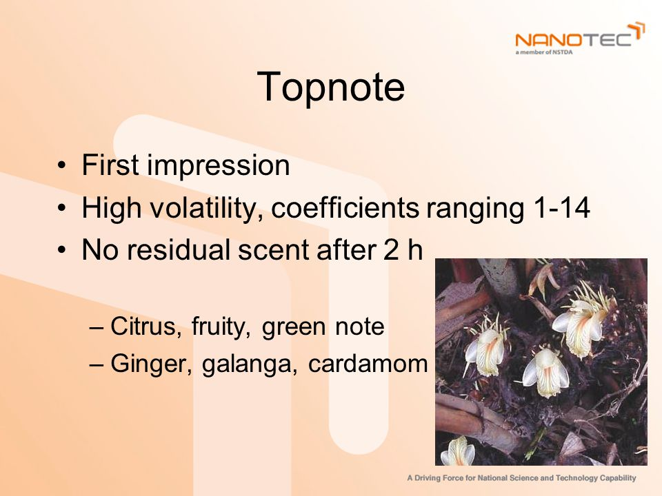 Topnote First impression High volatility, coefficients ranging 1-14 No residual scent after 2 h –Citrus, fruity, green note –Ginger, galanga, cardamom