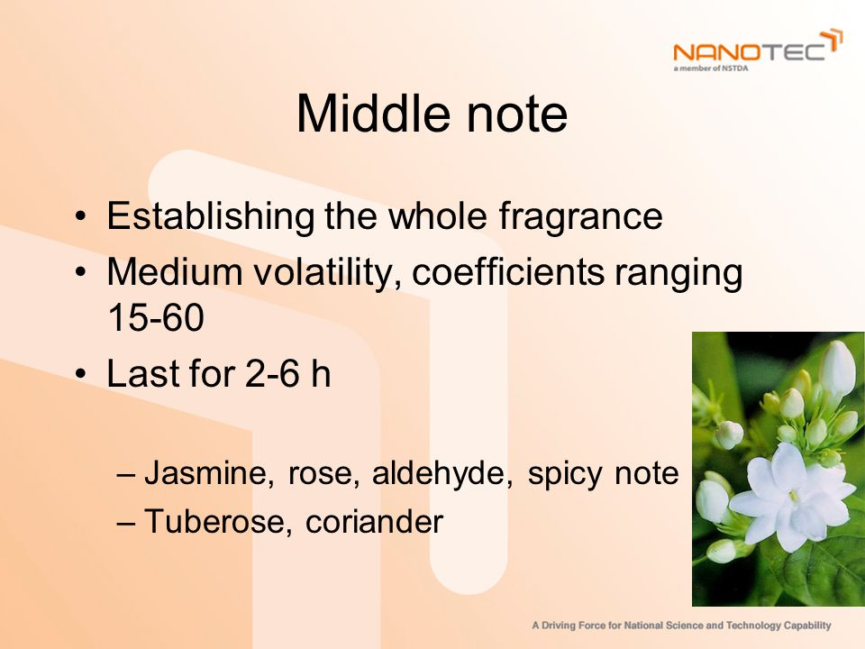 Middle note Establishing the whole fragrance Medium volatility, coefficients ranging 15-60 Last for 2-6 h –Jasmine, rose, aldehyde, spicy note –Tuberose, coriander