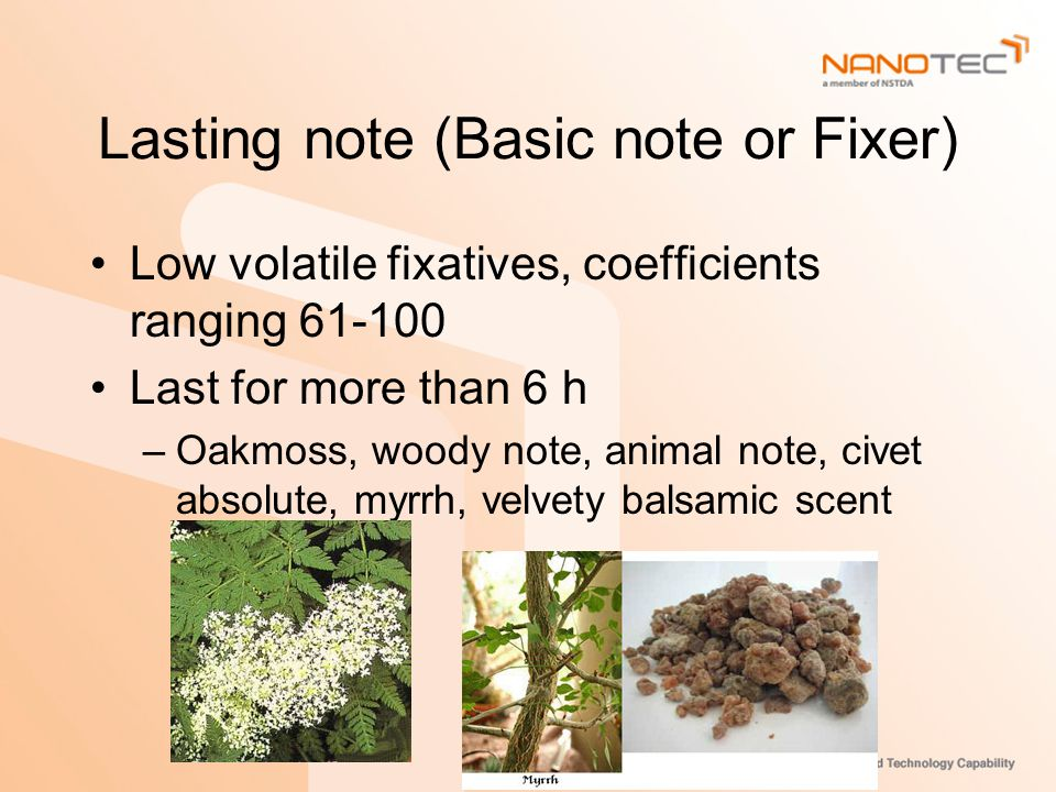 Lasting note (Basic note or Fixer) Low volatile fixatives, coefficients ranging 61-100 Last for more than 6 h –Oakmoss, woody note, animal note, civet absolute, myrrh, velvety balsamic scent