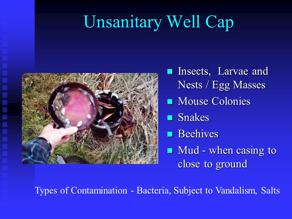 Unsanitary Well Cap Insects, Larvae and Nests / Egg Masses Mouse Colonies Snakes Beehives Mud - when casing to close to ground Types of Contamination - Bacteria, Subject to Vandalism, Salts