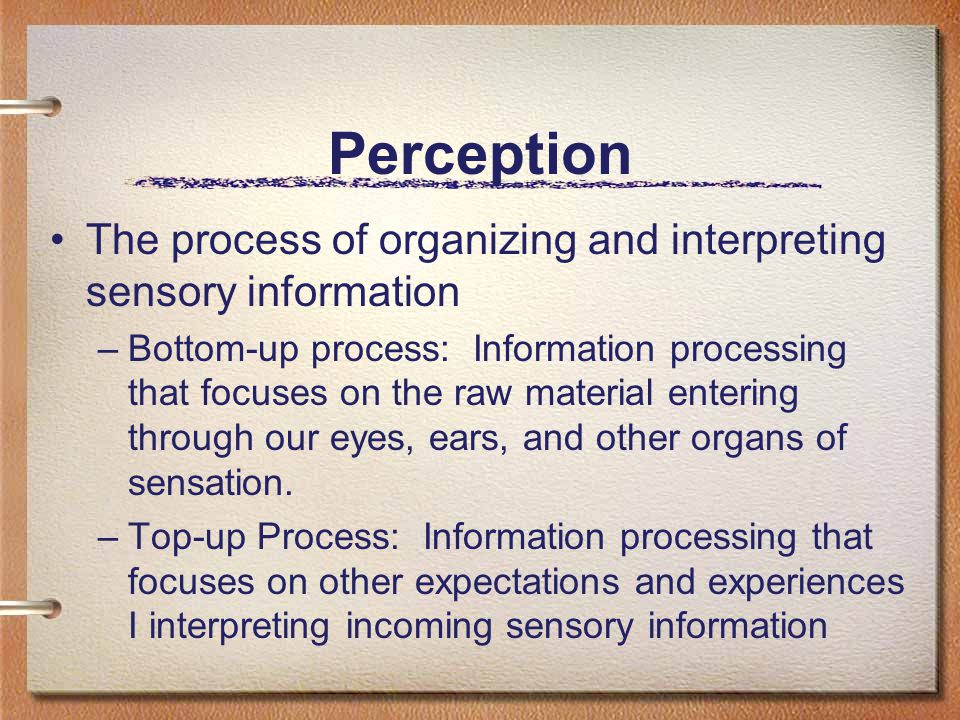 Perception The process of organizing and interpreting sensory information –Bottom-up process: Information processing that focuses on the raw material